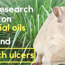 New research on essential oils and stomach ulcers