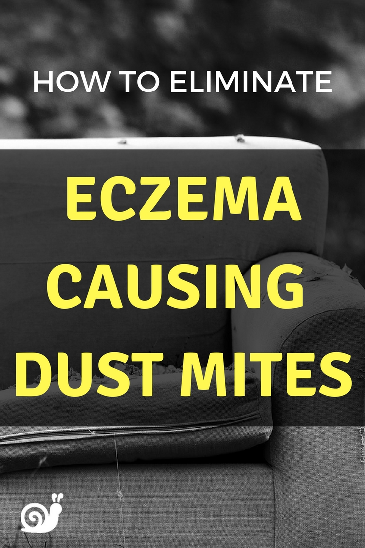 Dust mites cause asthma and eczema!!! Here's a natural way you can get rid of them, super useful!!!